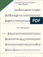 129536529-Colinde.pdf