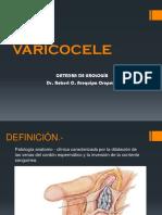 varicocele.pptx