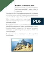 Nuestra Raices en Nuestro Peru