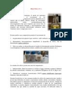 Informe de Practica n1