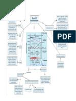 Mapa conceptual.pdfº.pdf