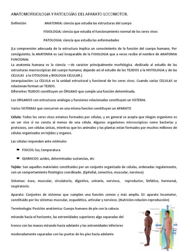 Clase 1 Anatomofisiologia y Patologías Del Aparato Locomotor