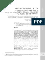 Conflictos Socioambientales en la Amazonia
