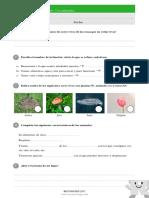 Evaluación Ciencias Naturaleza 3ep u1 Animales