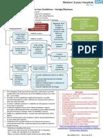 Primary Care Guidelines Vertigo
