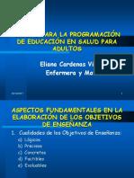 Diseño Para La Programacion de Educacion Para Adultos