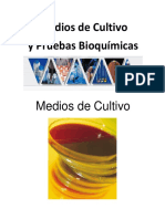 Medios de Cultivoy Pruebas Bioquímicas