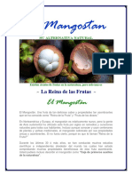 experiencias-con-el-mangostan.pdf