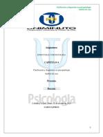 Analisis de caso  3 Esquizofrenia Paranoide