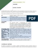 INDICADORES Y PH.docx