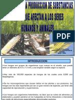1.LOS HONGOS Y LA PRODUCCION DE SUBSTANCIAS TOXICAS.ppt
