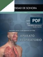 aparato-respiratorio-97-2003.ppt