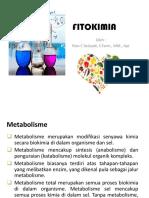 FITOKIMIA meet II.pptx