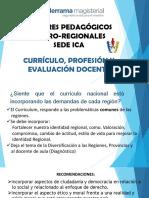 2. Region Ica