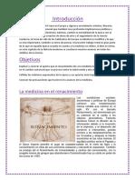 Medicina Del Renacimiento 1