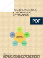 Estructura Organizacional de Un Organismo Internacional