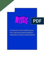 APARATO MITOTICO.pdf