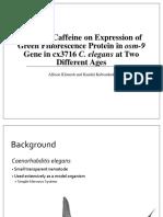 cell bio caffeine presentation