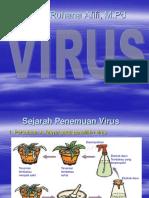 Pert 7 Virus
