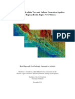 Seapex Report of Papuan basin