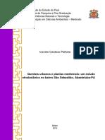 Dissertacao Ivanete Palhete Turma 2013