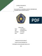 fitokimia tugas 2.docx