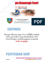 DHF (Dengue Haemoragic Fever).pptx