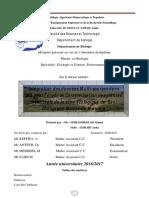 Mémoire Fin Etude   mohamedi.pdf