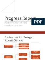 Progress Report (Erwin Edited)