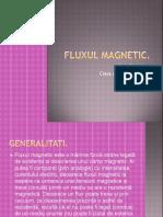 Fluxul Magnetic