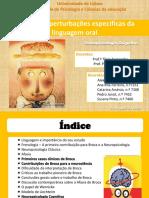 Trabalho de Neuropsicologia Cognitva Do Grupo Da Rita Ferreira - Afasia de Broca - Texto 2[1]