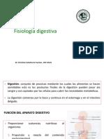 FIsio Digestivo .pptx