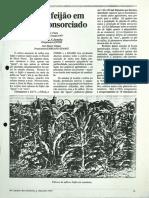 Milho-feijao.pdf