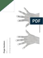 Worksheet 2 - Finger Numbers
