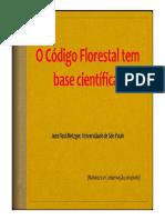 Codigo Florest Jean