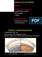 31Congenital Glaucomas