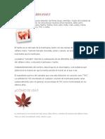 Qué Es La Marihuana