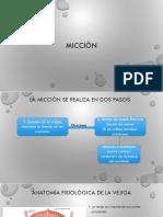 Micción