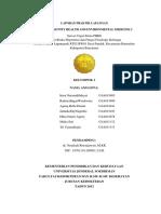 25 Juni 2012 - LAPORAN PL KELOMPOK 2 CHEM II Angkatan 2011.docx