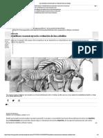 Los científicos reconstruyen la evolución de los caballos