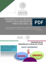 Embarazo y Zika 2016