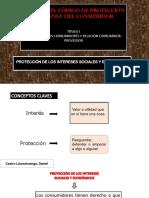 Tema 7 Proteccion de Los Intereses Sociales y Economicos, Contratos de Consumo.