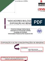 apresentacao_Benzeno_Fundacentro.pdf