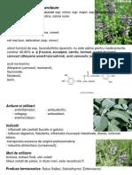 24-sem II.pdf