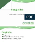 apresentaofungicidaslaura-151214232735