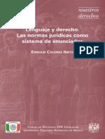 lenguaje y derecho enrique caceres nieto.pdf