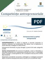Prezentare Competente Antreprenoriale - V1