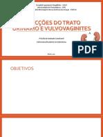 Serminário 6 - Infecções Do Trato Urinário e Vulvovaginites