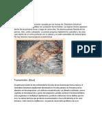 Características del Botulismo en aves