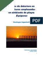 Informe Causas de Deterioro en Estructuras Emplazadas en Ambiente de Playa